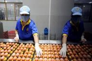 Mặt trận Tổ quốc đi giám sát an toàn thực phẩm